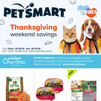 - Thanksgiving Weekend Savings Flyer