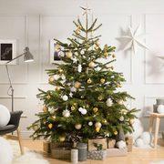 Image Christmas Tree Free.Ikea Get A Free 25 00 Coupon When You Buy A Christmas Tree