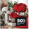 All Christmas Floral  - 50% off